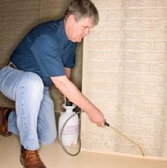 Los expertos alertan de los peligros del intrusismo y de profesionales no cualificados en el sector de control de plagas